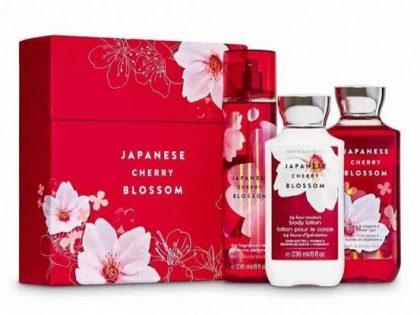 مجموعة Japanese Cherry Blossom